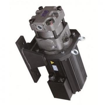 SUMITOMO CQTM33-16V-3.7-2R-S1243-E Double Pompe à engrenages