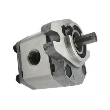 Vickers PV080L1K1A4NFRC+PGP511A0140AA1 PV 196 pompe à piston