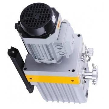 Vickers PV080R1K1J3NFDS+PV023R1L1T1NMM PV 196 pompe à piston