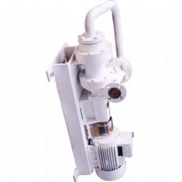 SUMITOMO QT62-100-A Medium-pressure Pompe à engrenages #1 image