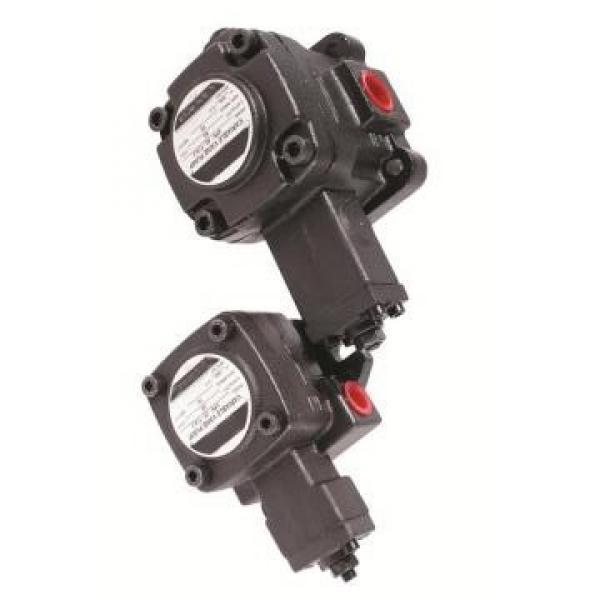 Vickers PV080R1K1A4NFWS+PGP511A0280CA1 PV 196 pompe à piston #2 image
