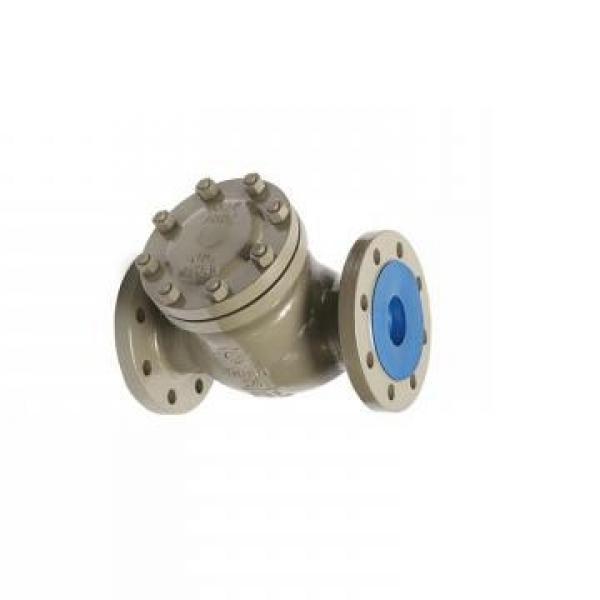 SUMITOMO QT61-200-A Low Pressure Pompe à engrenages #1 image