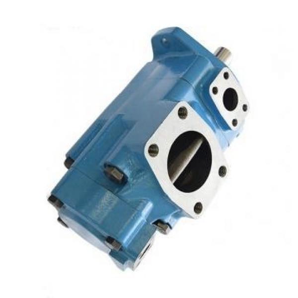 SUMITOMO QTM43-31.5F-7.5-2-T Double Pompe à engrenages #1 image
