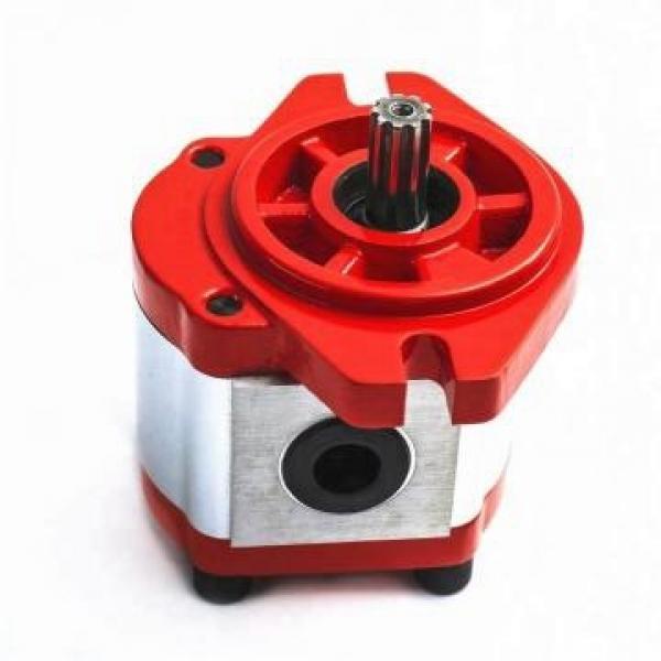 SUMITOMO CQTM54-50FV+15-2-T-M-S1307J-A-200V Double Pompe à engrenages #2 image