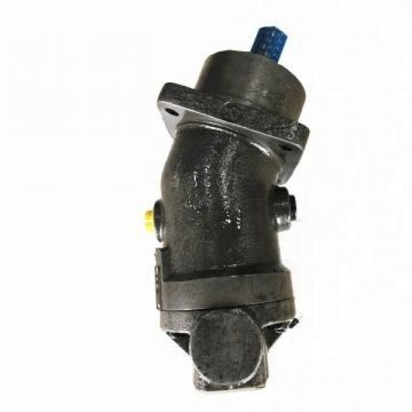 SUMITOMO QT61-200-A Low Pressure Pompe à engrenages #3 image
