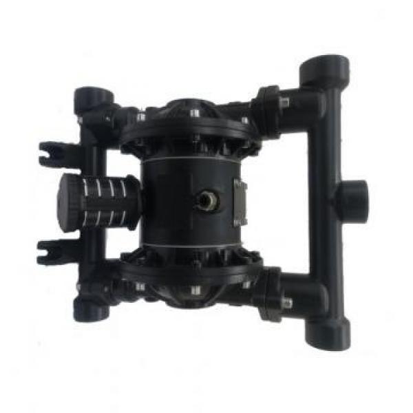 SUMITOMO QT41-40-A Low Pressure Pompe à engrenages #1 image