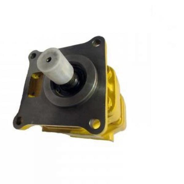 SUMITOMO QT62-100F-A Medium-pressure Pompe à engrenages #1 image