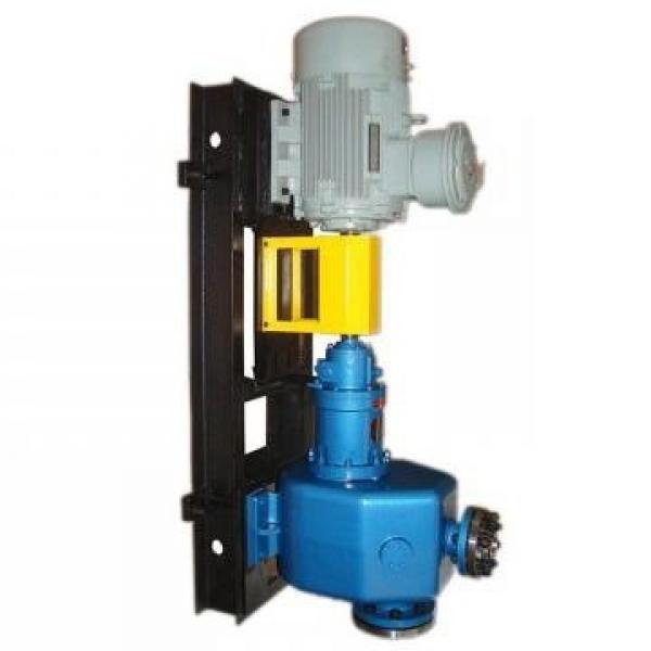 SUMITOMO QT62-100-A Medium-pressure Pompe à engrenages #3 image