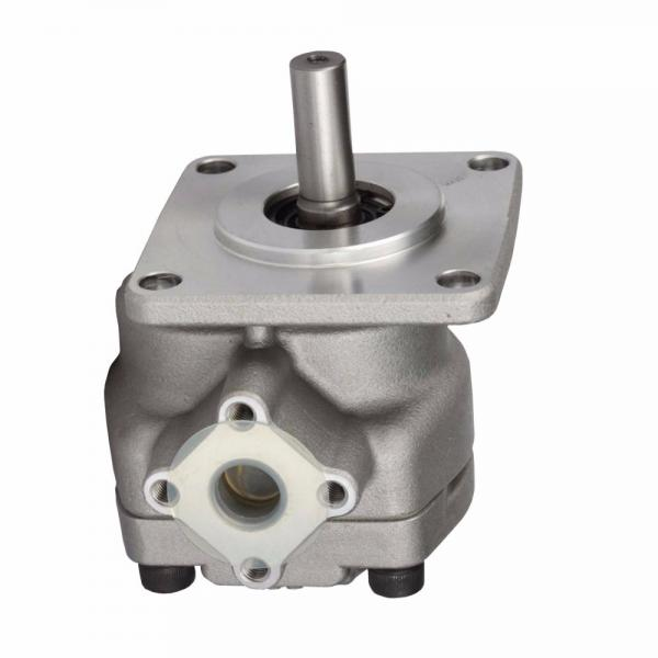 SUMITOMO QT63-80F-A High Pressure Pompe à engrenages #1 image