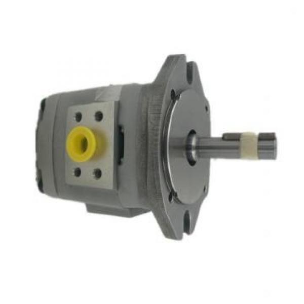 SUMITOMO QTM43-31.5F-7.5-2-T Double Pompe à engrenages #3 image