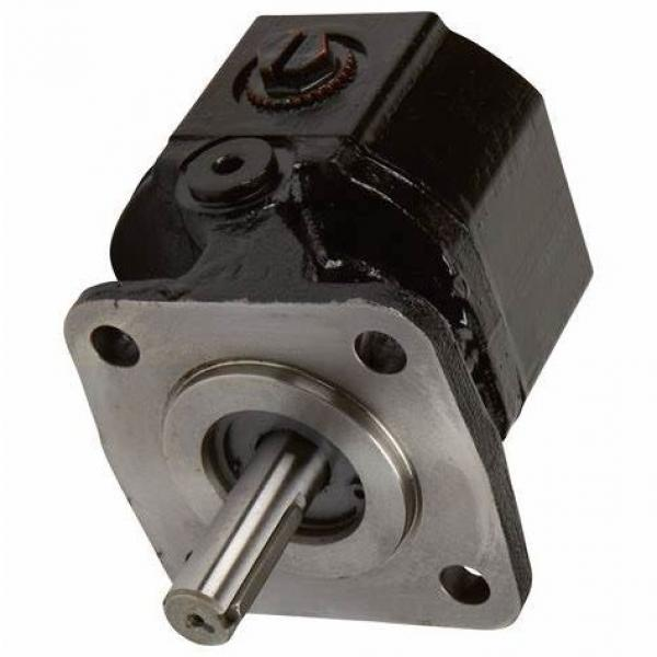 SUMITOMO QT33-12.5-A High Pressure Pompe à engrenages #1 image