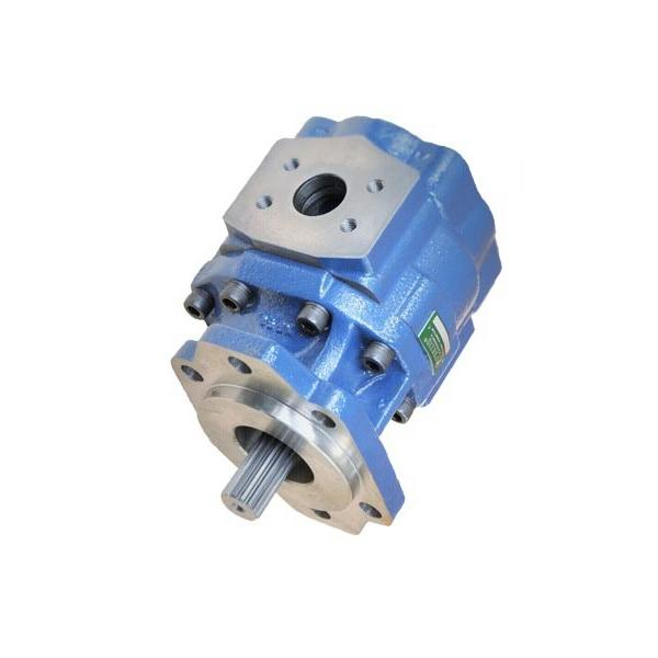 SUMITOMO QT43-25F-A High Pressure Pompe à engrenages #1 image