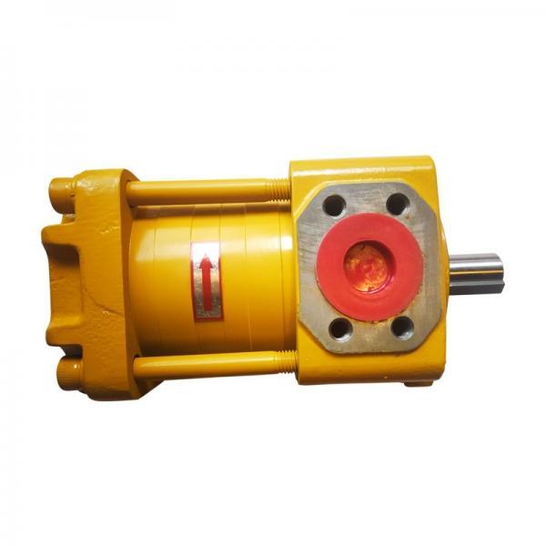 SUMITOMO QT53-40-A High Pressure Pompe à engrenages #1 image