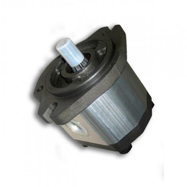 SUMITOMO QT63-80F-A High Pressure Pompe à engrenages #3 image