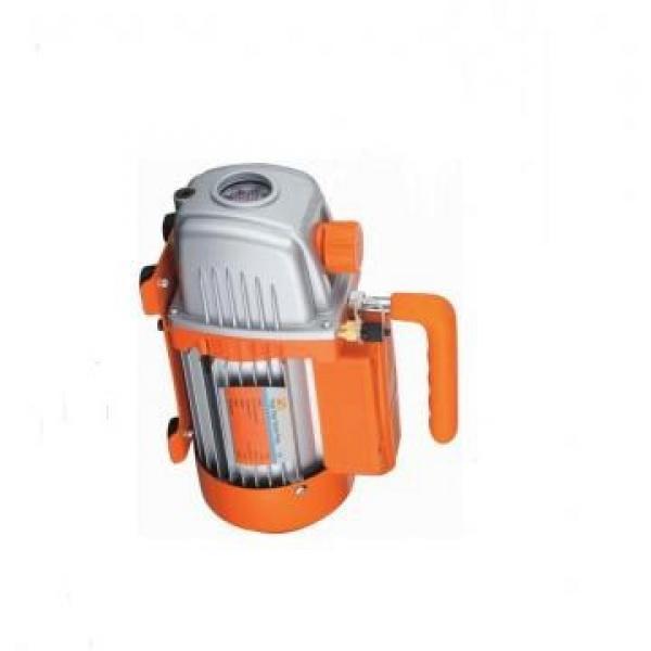 SUMITOMO QT63-100-A Double Pompe à engrenages #2 image