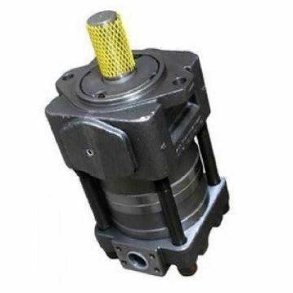 SUMITOMO CQTM63-100F+15T Double Pompe à engrenages #3 image