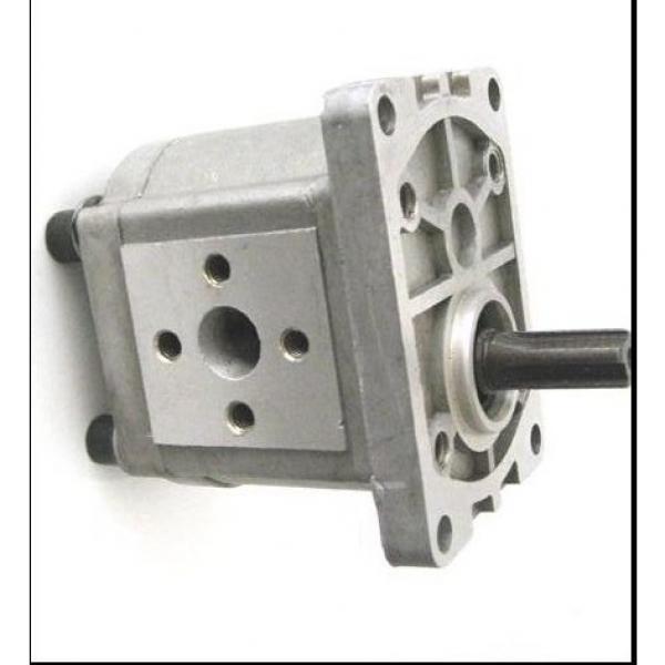 SUMITOMO QT23-4F-A High Pressure Pompe à engrenages #1 image