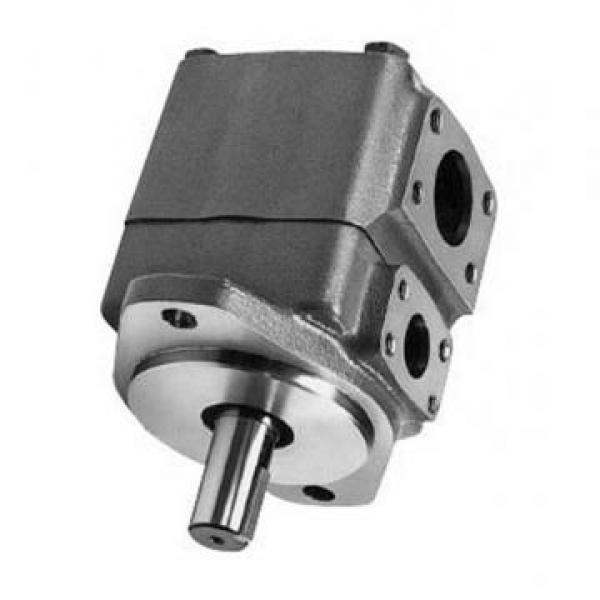 Vickers PV080R1K1T1NGLZ+PVAC2ECMNSJW20 PV 196 pompe à piston #2 image