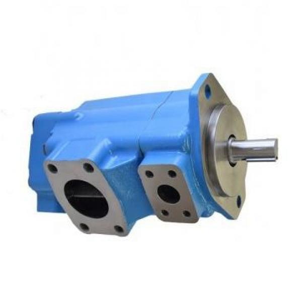 Vickers PV080R1K1T1NGLZ+PVAC2ECMNSJW20 PV 196 pompe à piston #1 image