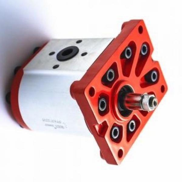 Vickers PV080R1K1A4NULC+PGP505A0080CA1 PV 196 pompe à piston #2 image