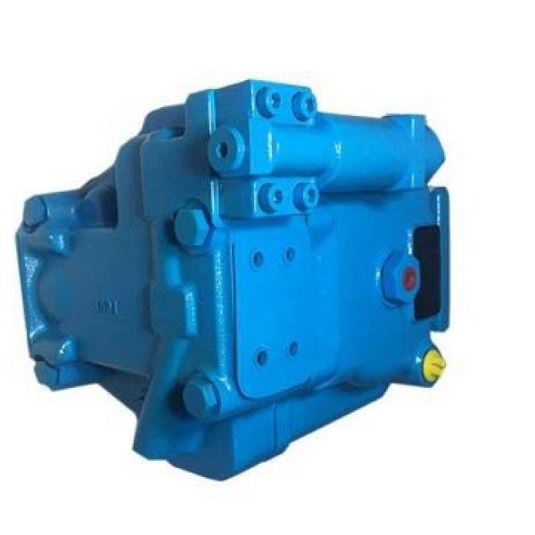 Vickers PV080R1K1L3NFFC+PV063R1L1T1NFW PV 196 pompe à piston #1 image