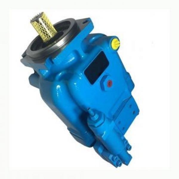 Vickers PV080R1K1A4NFRC+PGP511A0230CA1 PV 196 pompe à piston #1 image