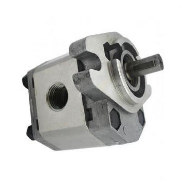 Vickers PV080L1K1A4NFRC+PGP511A0140AA1 PV 196 pompe à piston #1 image