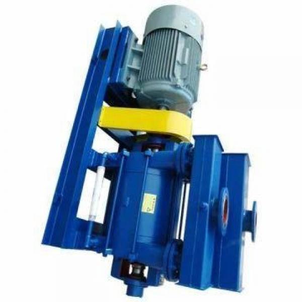 Vickers PV080L1K1A4NFFC+PGP505A0100AA1 PV 196 pompe à piston #1 image